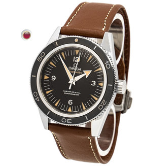 OMEGA | Seamaster 300 Omega Master Co-Axial 41 mm | Ref. 233.32.41.21.01.002